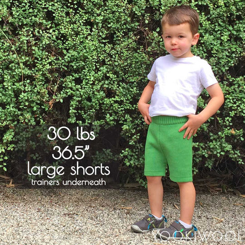 large shorts front no diaper 30 lbs