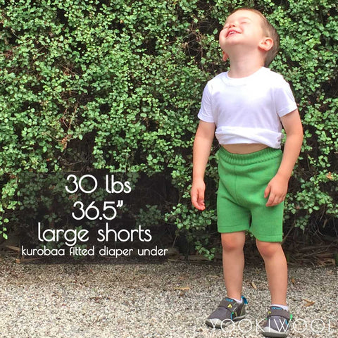 large shorts fitted diaper front 30 lbs