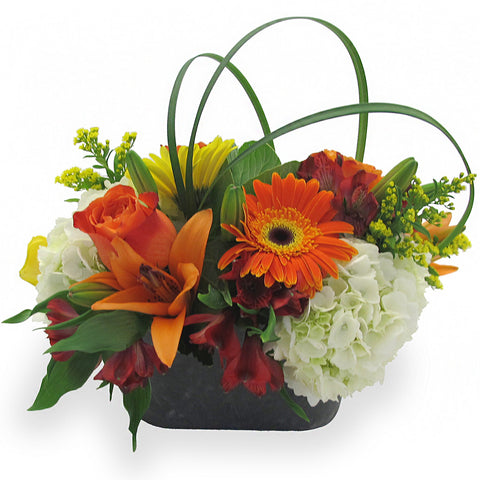 Contemporary Autumn Bouquet - Giving Blooms