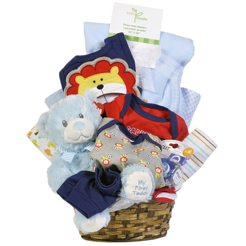 Gift Basket - Baby Boy - Giving Blooms