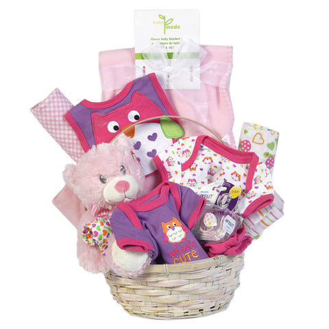Gift Basket - Baby Girl - Giving Blooms