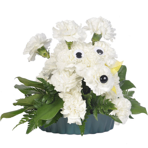 Pouncing Poodle Bouquet - Giving Blooms