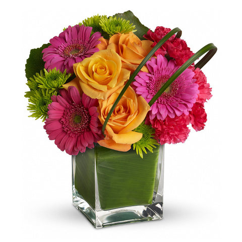 Party Girl Bouquet - Giving Blooms