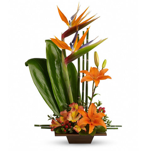 Exotic Grace Bouquet - Giving Blooms