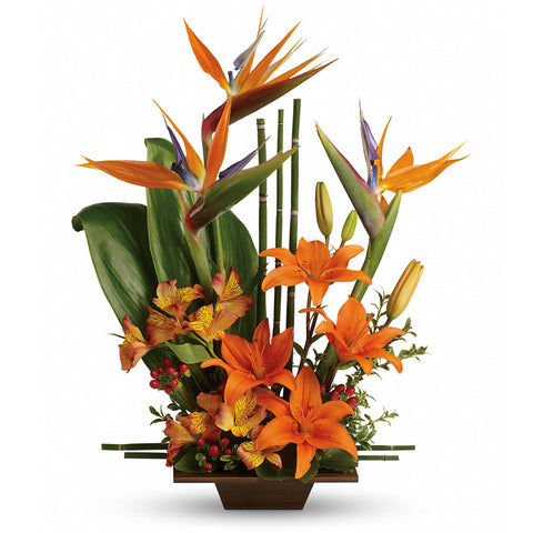 Exotic Grace Bouquet, Premium - Giving Blooms