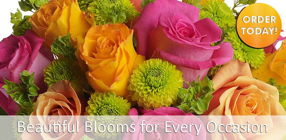 Giving Blooms for every Occasion