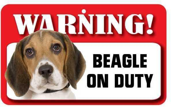 DS005 Beagle Pet Sign
