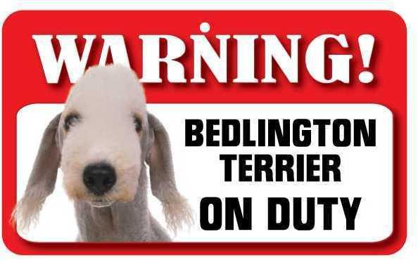 DS006 Bedlington Terrier Pet Sign