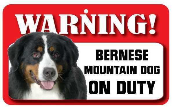 DS007 Bernese Mountain Dog Pet Sign