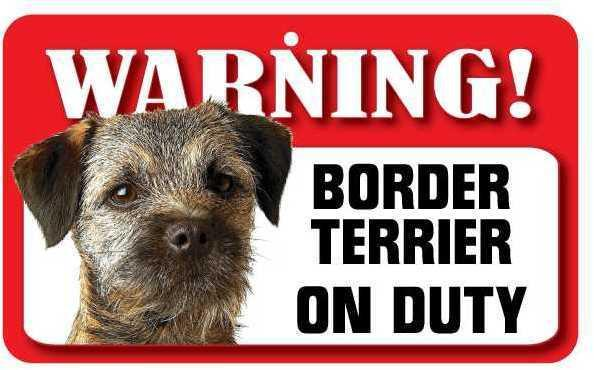 DS010 Border Terrier Pet Sign