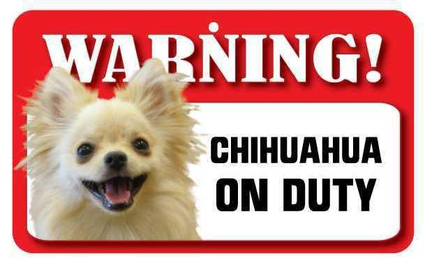 DS018 Long Haired Chihuahua Pet Sign