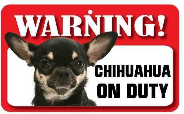 DS019 Multi Coloured Chihuahua Pet Sign