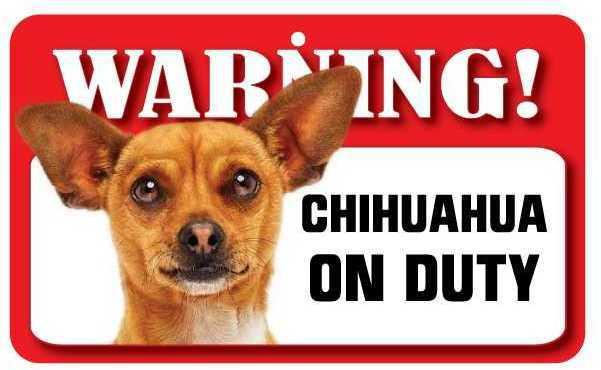DS020 Tan Chihuahua Pet Sign