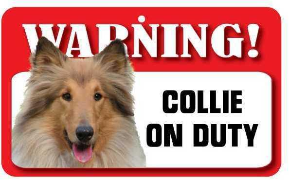DS022 Collie Pet Sign