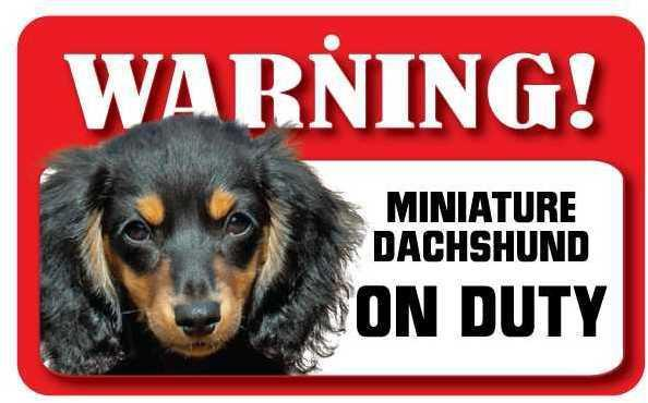 DS023 Long Haired Miniature Dachshund Pet Sign