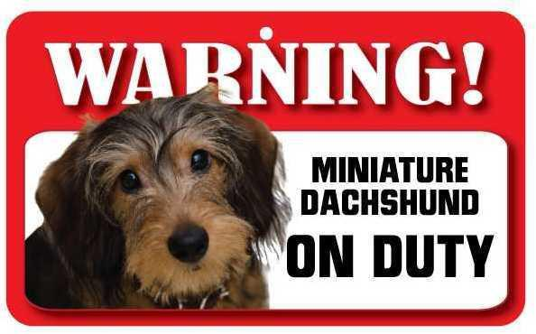 DS025 Wire Haired Miniature Dachshund Pet Sign