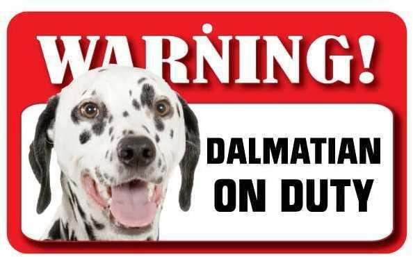 DS026 Dalmatian Pet Sign