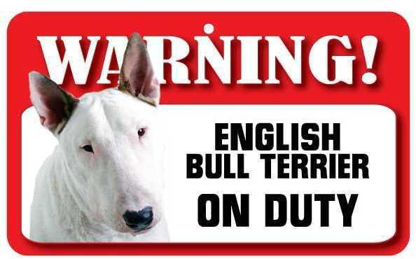 DS029 English Bull Terrier Pet Sign