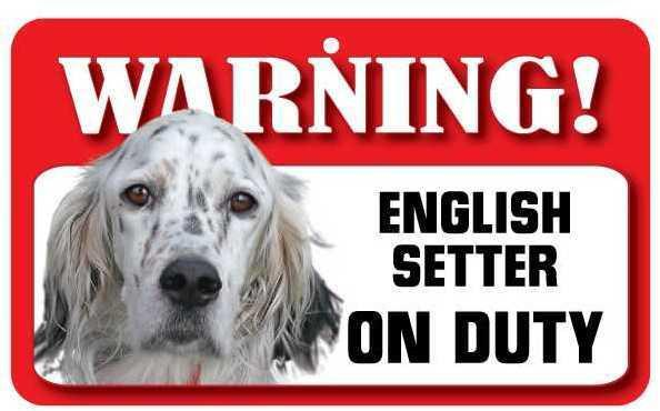 DS030 English Setter Pet Sign