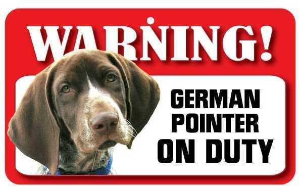 DS033 German Pointer Pet Sign