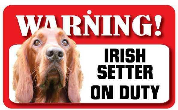 DS038 Irish Setter Pet Sign