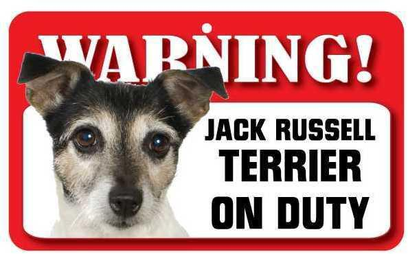 DS041 Jack Russell Terrier Pet Sign