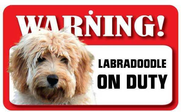 DS042 Labradoodle Pet Sign