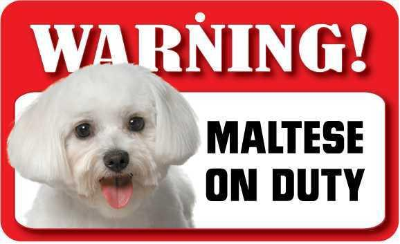 DS049 Maltese Pet Sign