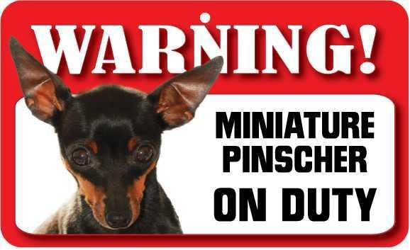 DS050 Miniature Pinscher Pet Sign