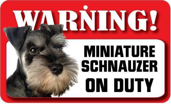 DS051 Miniature Schnauzer Pet Sign