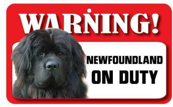 DS052 Newfoundland Pet Sign
