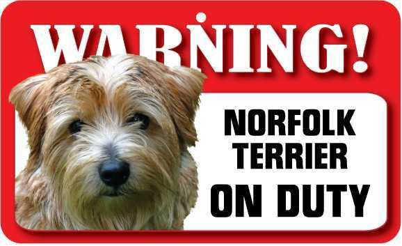 DS053 Norfolk Terrier Pet Sign
