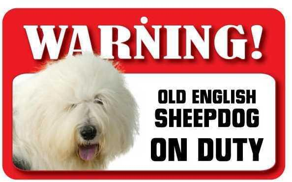 DS054 Old English Sheepdog Pet Sign