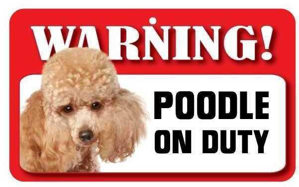 DS060 Toy Poodle Pet Sign