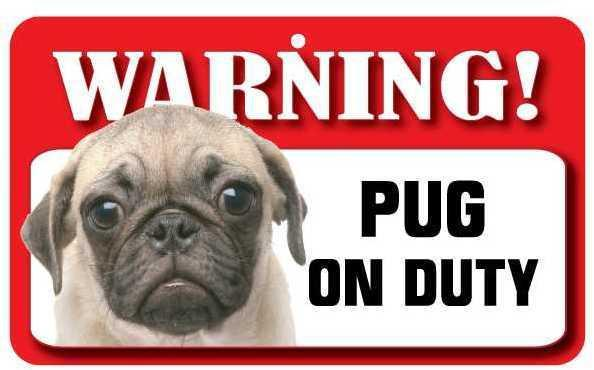 DS062 Pug Pet Sign