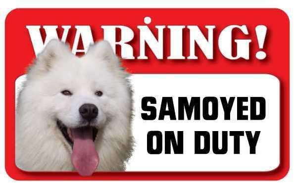 DS066 Samoyed Pet Sign