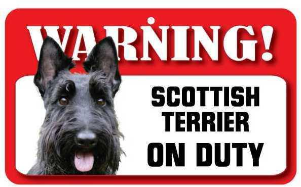 DS068 Scottish Terrier Pet Sign