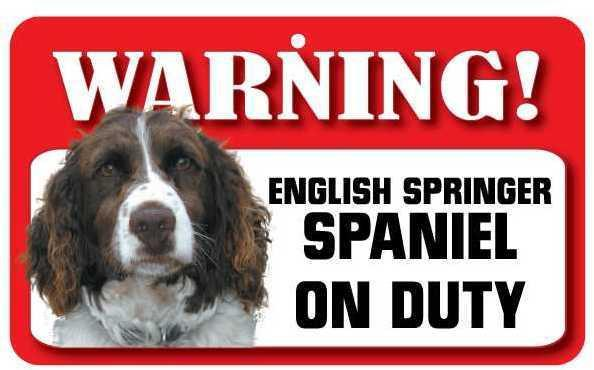 DS074 English Springer Spaniel Pet Sign