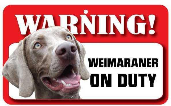 DS077 Weimaraner Pet Sign