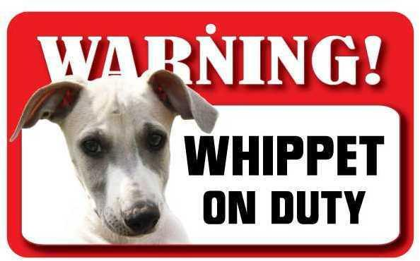 DS080 Whippet Pet Sign