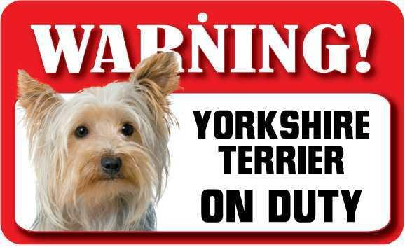 DS081 Yorkshire Terrier Pet Sign