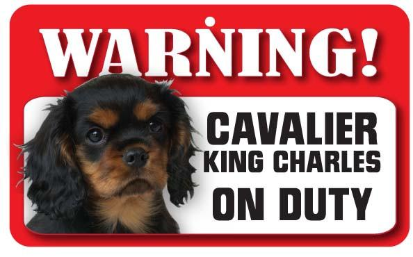 Cavalier King Charles Ruby Black Sign