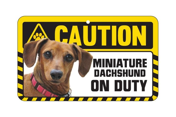 Dachsund Smooth Haired Caution Sign
