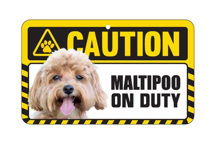 Maltipoo  Caution Sign