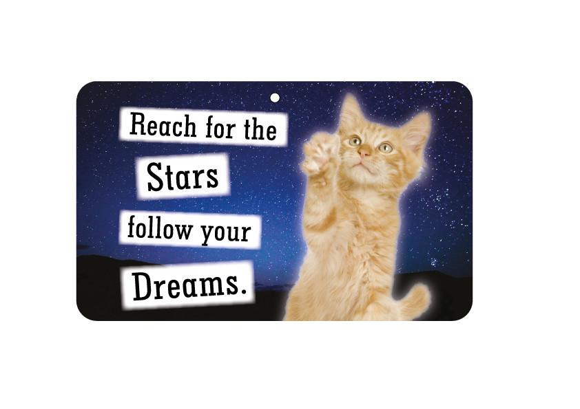 FN014 Fun Sign - Reach For The Stars