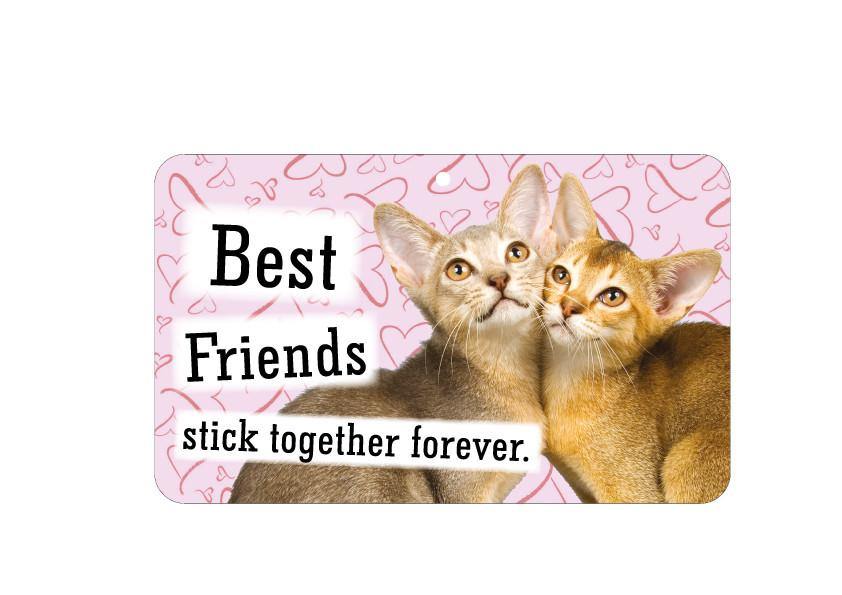 FN022 Fun Sign - Best Friends Stick Together