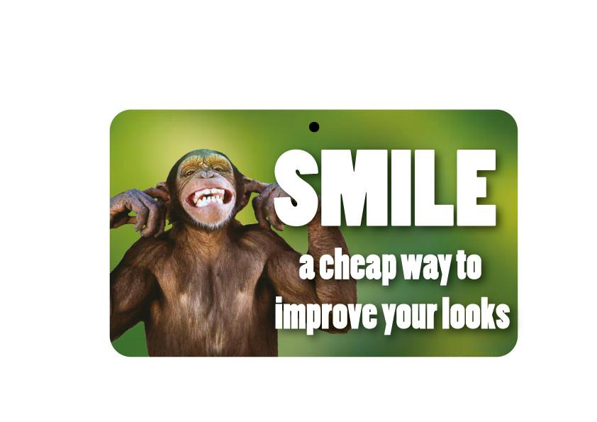 FN112 Fun Sign - Smile And Improve Your Looks