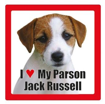 Parson Russell Pet Coaster