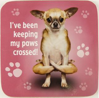 Paws Crossed Dog Coaster - Yoga Pets