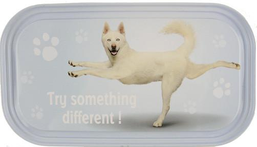 Try Something Dog Fridge Magnet - Yoga Pets